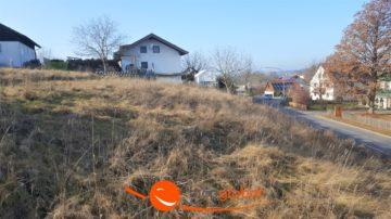 ***Teilbares, großes Grundstück mitten im Ort***, 84149 Velden, Wohngrundstück